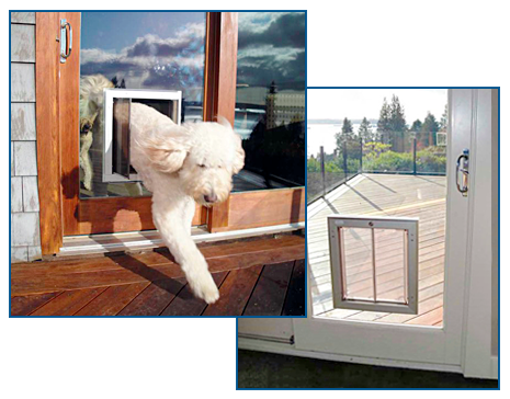 how to install a dog door in a glass door 1