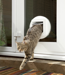 Sacramento pet door installation