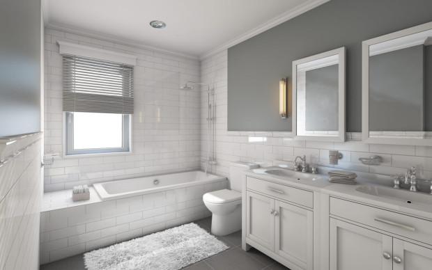 Bathroom Remodeling Ideas  Design